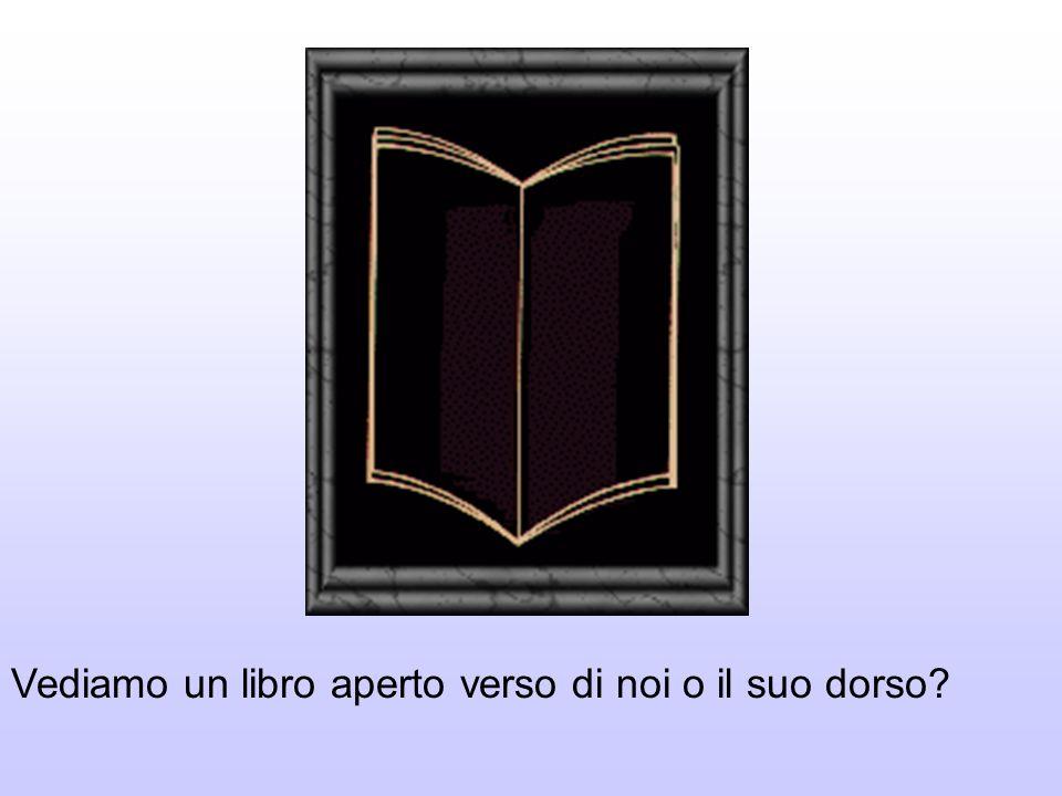 Vediamo un libro aperto verso di noi o il suo dorso