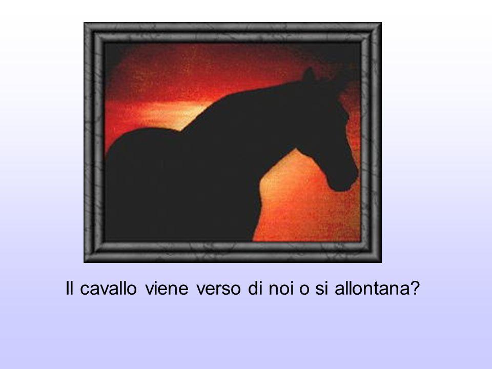 Il cavallo viene verso di noi o si allontana