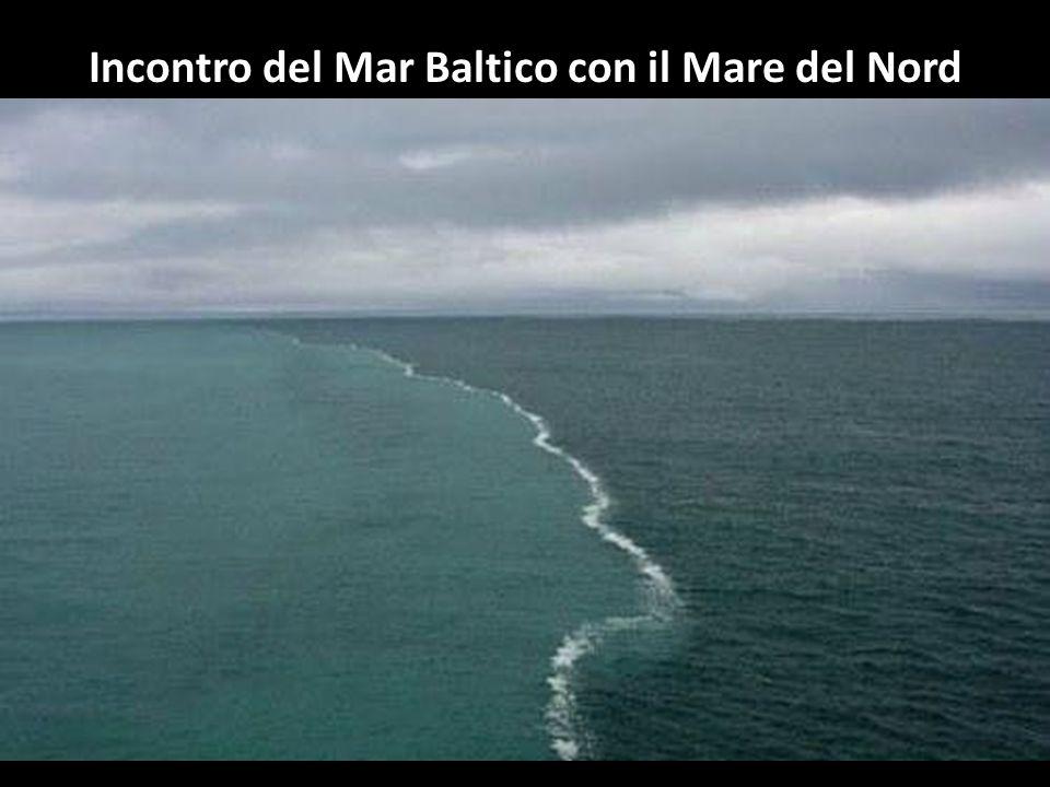Incontro del Mar Baltico con il Mare del Nord