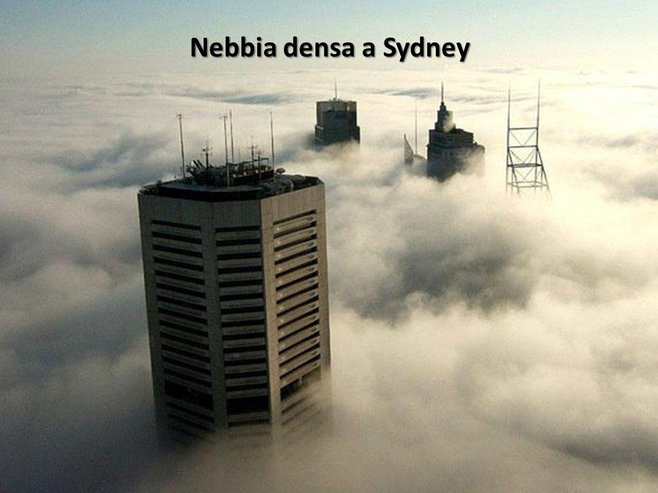 Nebbia densa a Sydney
