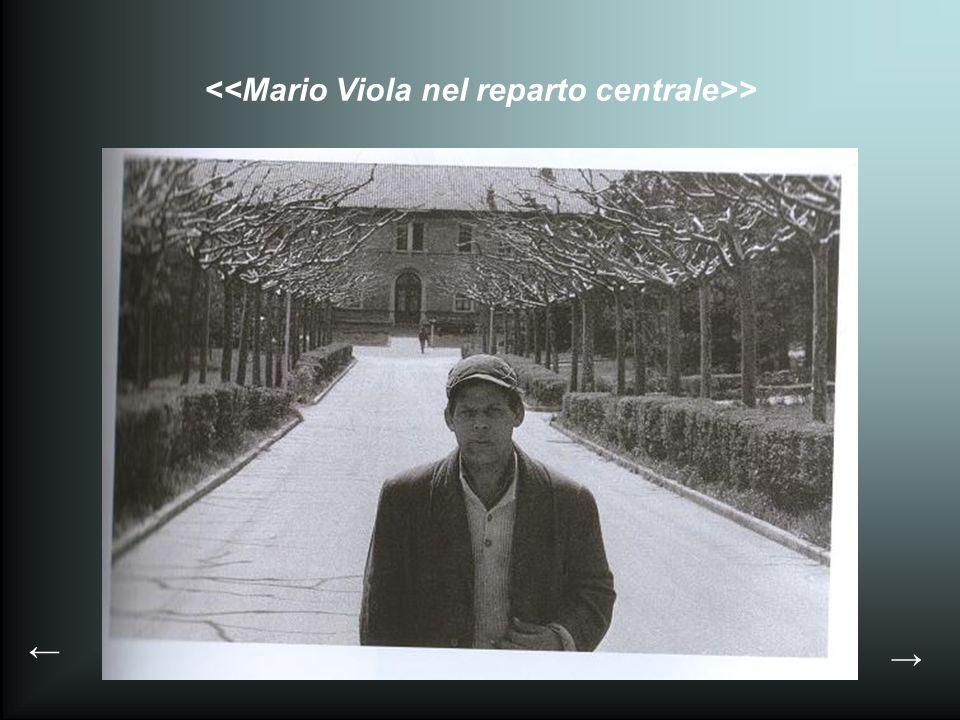 <<Mario Viola nel reparto centrale>>