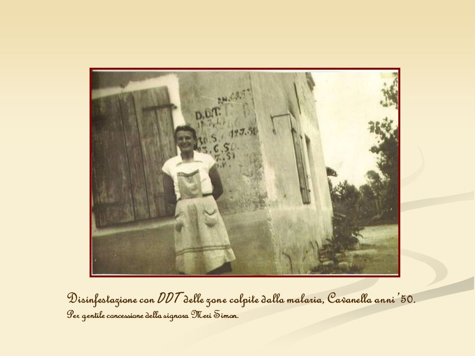 Disinfestazione con DDT delle zone colpite dalla malaria, Cavanella anni '50.