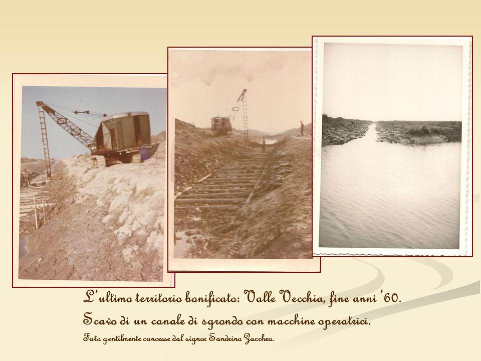 L'ultimo territorio bonificato: Valle Vecchia, fine anni '60.