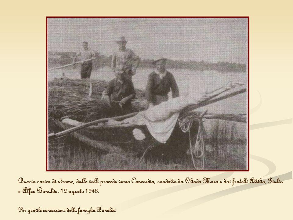 Burcio carico di strame, dalle valli procede verso Concordia, condotto da Olindo Moro e dai fratelli Attilio, Giulio