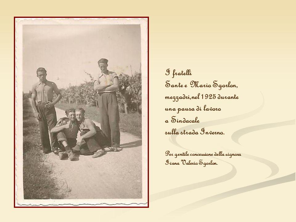 I fratelli Sante e Mario Sgorlon, mezzadri,nel 1925 durante