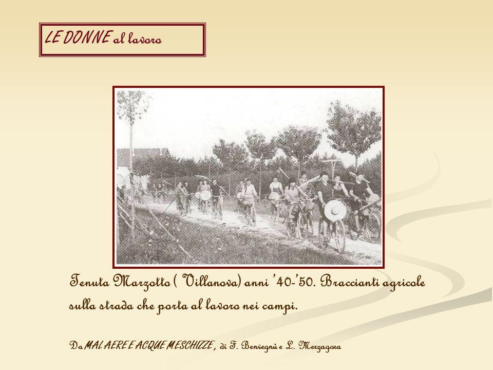 Tenuta Marzotto ( Villanova) anni '40-'50. Braccianti agricole