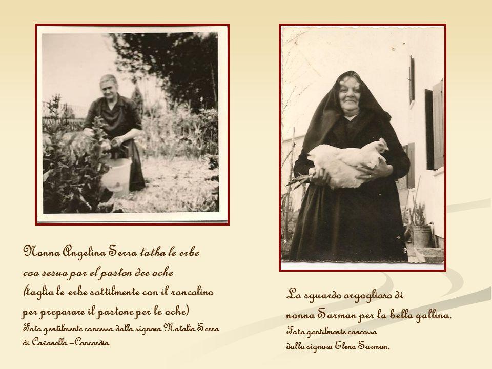 Nonna Angelina Serra tatha le erbe coa sesua par el paston dee oche