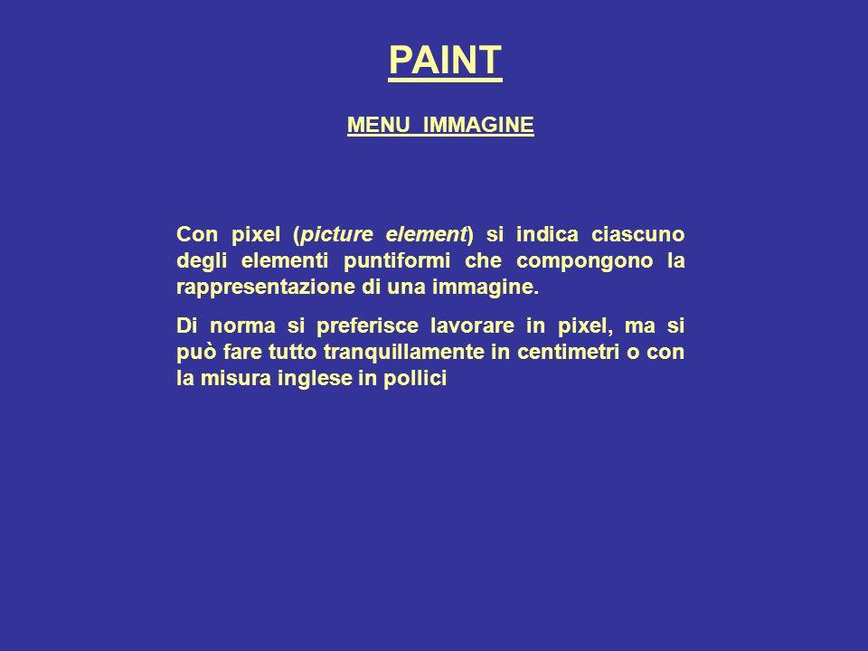 PAINT MENU IMMAGINE. Con pixel (picture element) si indica ciascuno degli elementi puntiformi che compongono la rappresentazione di una immagine.