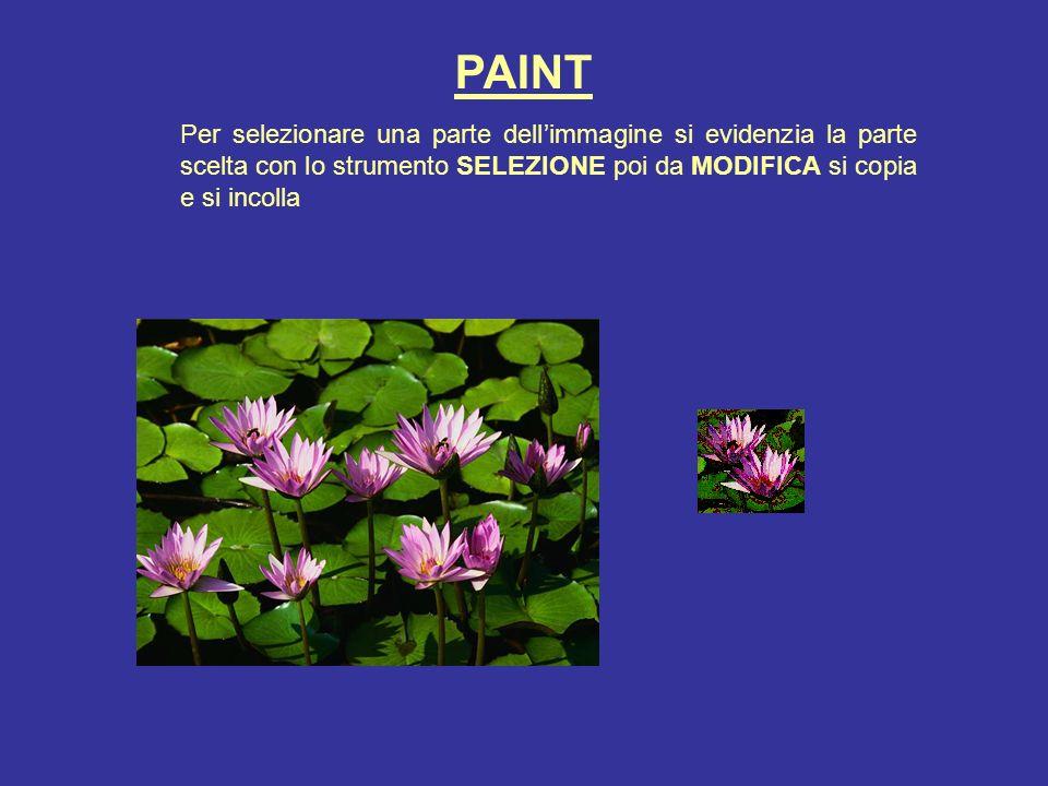 PAINT Per selezionare una parte dell'immagine si evidenzia la parte scelta con lo strumento SELEZIONE poi da MODIFICA si copia e si incolla.