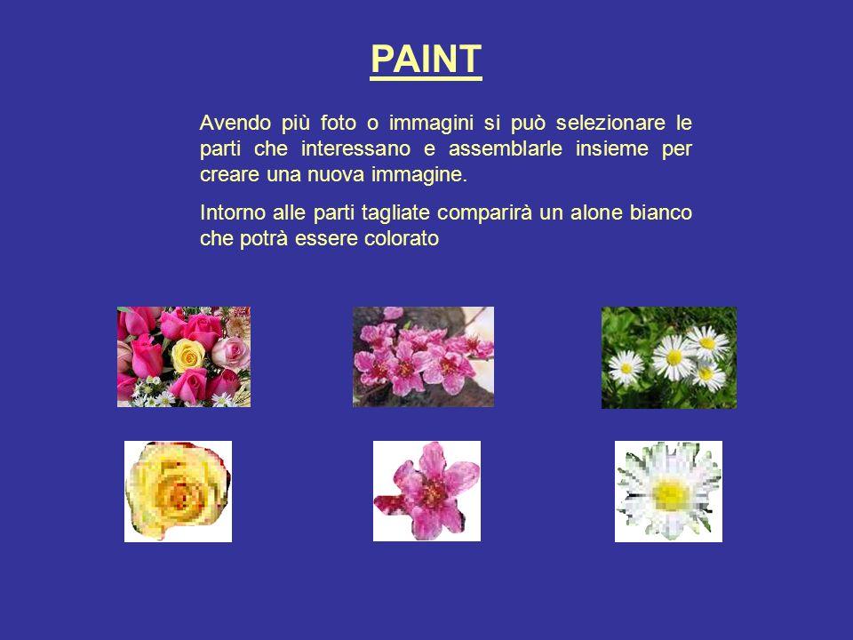 PAINT Avendo più foto o immagini si può selezionare le parti che interessano e assemblarle insieme per creare una nuova immagine.