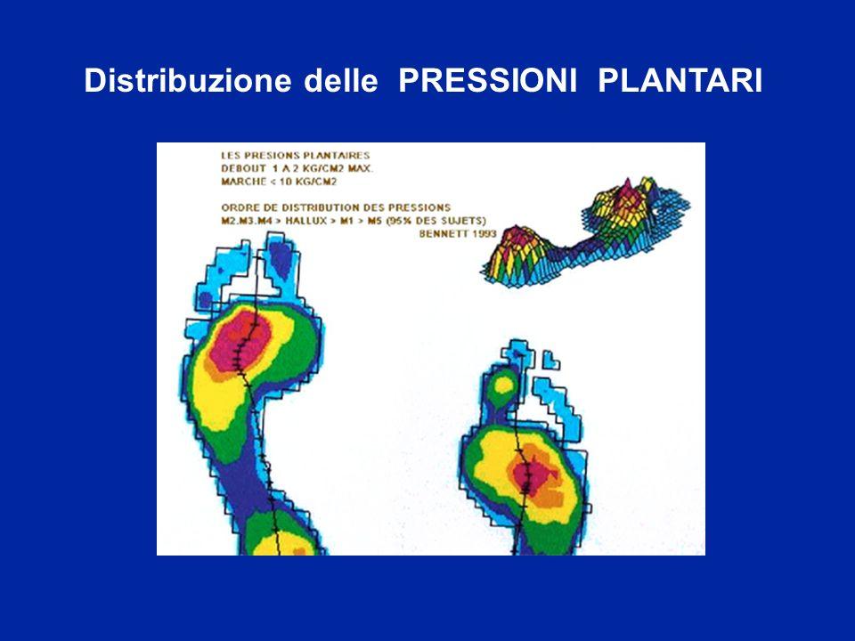 Distribuzione delle PRESSIONI PLANTARI