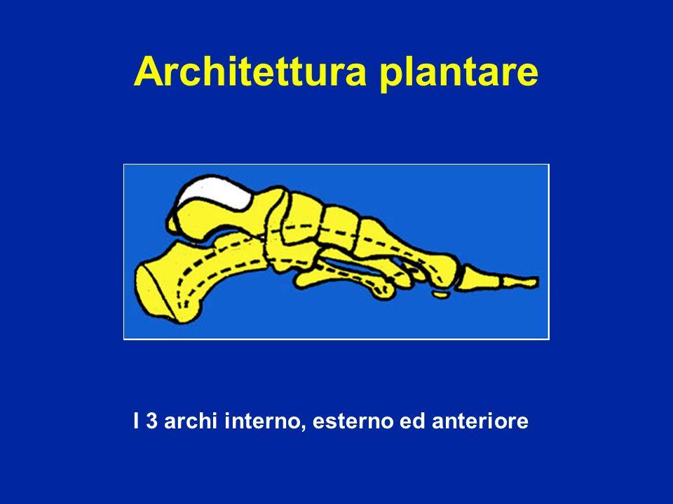 Architettura plantare