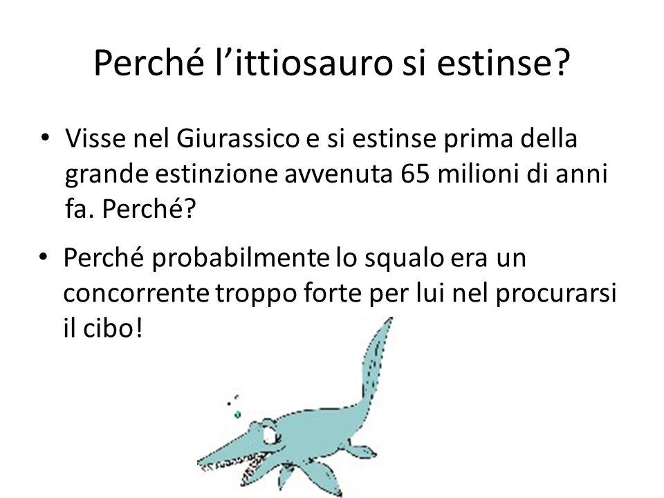 Perché l'ittiosauro si estinse