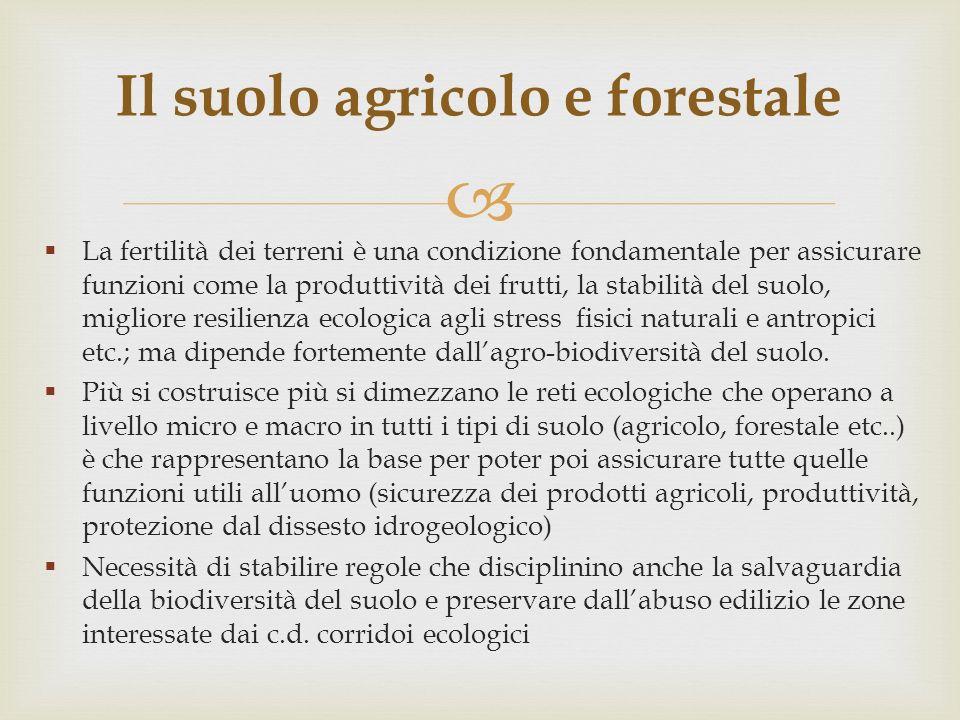 Il suolo agricolo e forestale
