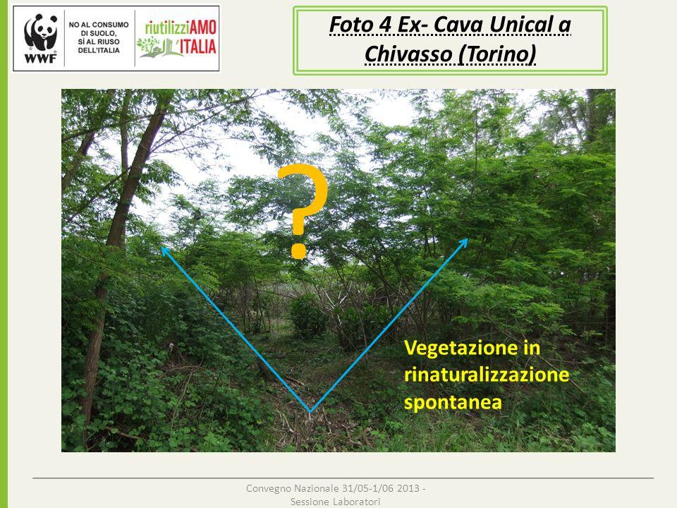 Foto 4 Ex- Cava Unical a Chivasso (Torino)