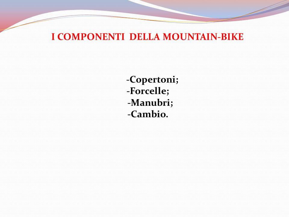 I COMPONENTI DELLA MOUNTAIN-BIKE