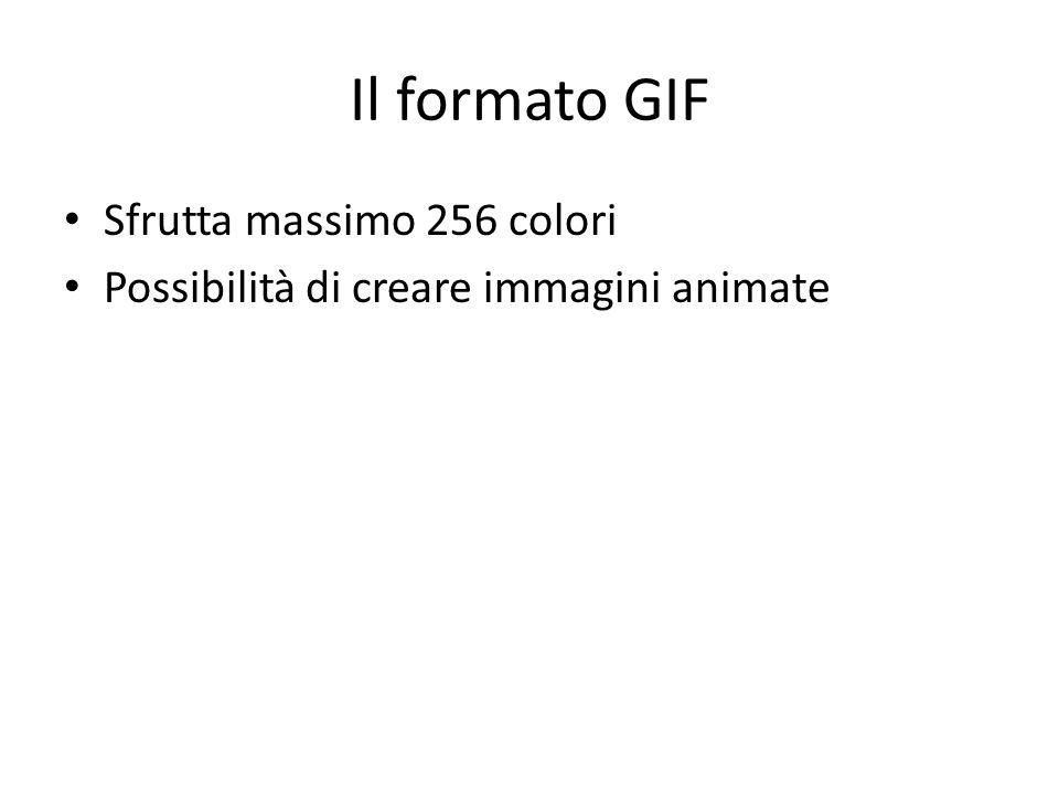 Il formato GIF Sfrutta massimo 256 colori