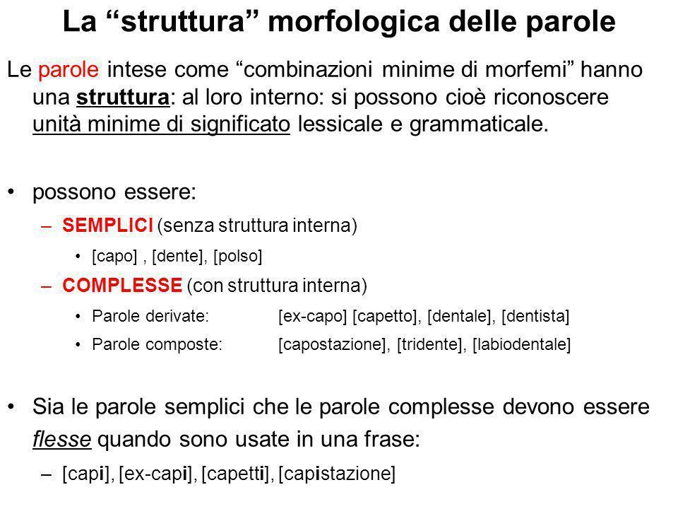 La struttura morfologica delle parole
