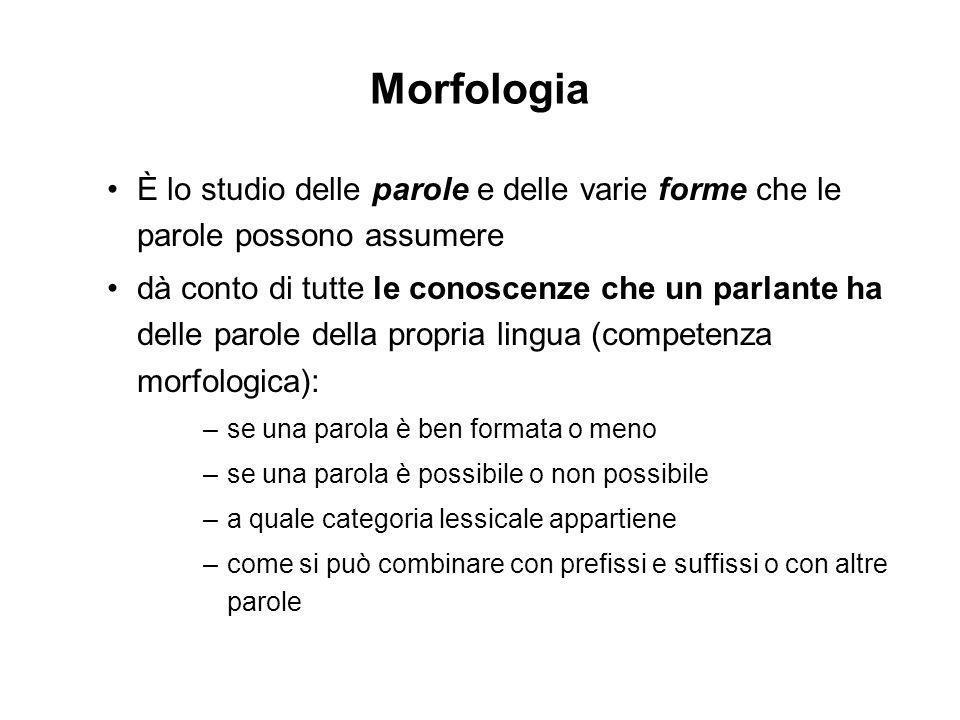 Morfologia È lo studio delle parole e delle varie forme che le parole possono assumere.