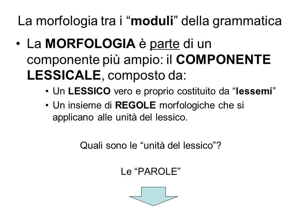 La morfologia tra i moduli della grammatica