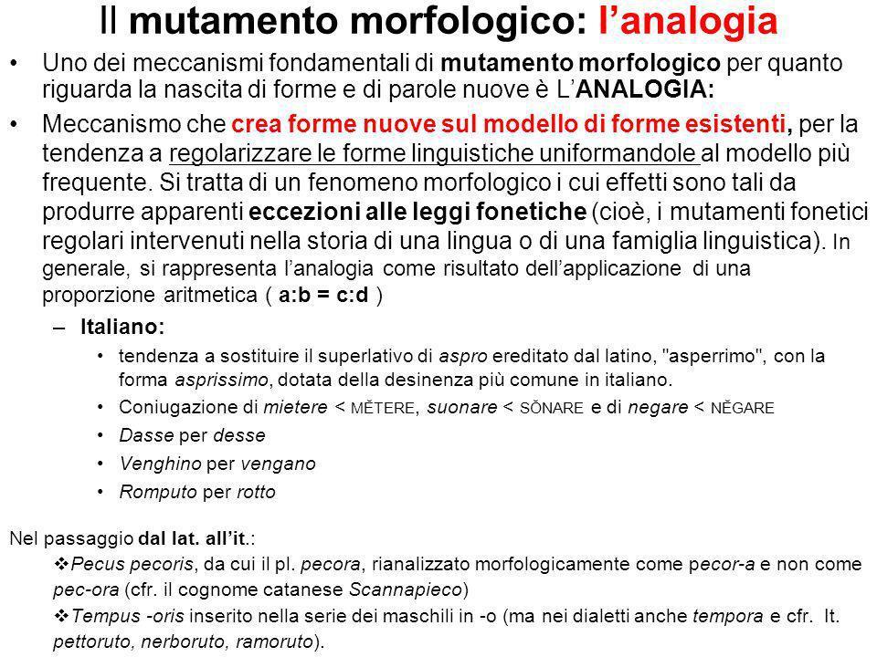 Il mutamento morfologico: l'analogia