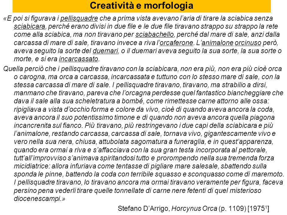 Creatività e morfologia