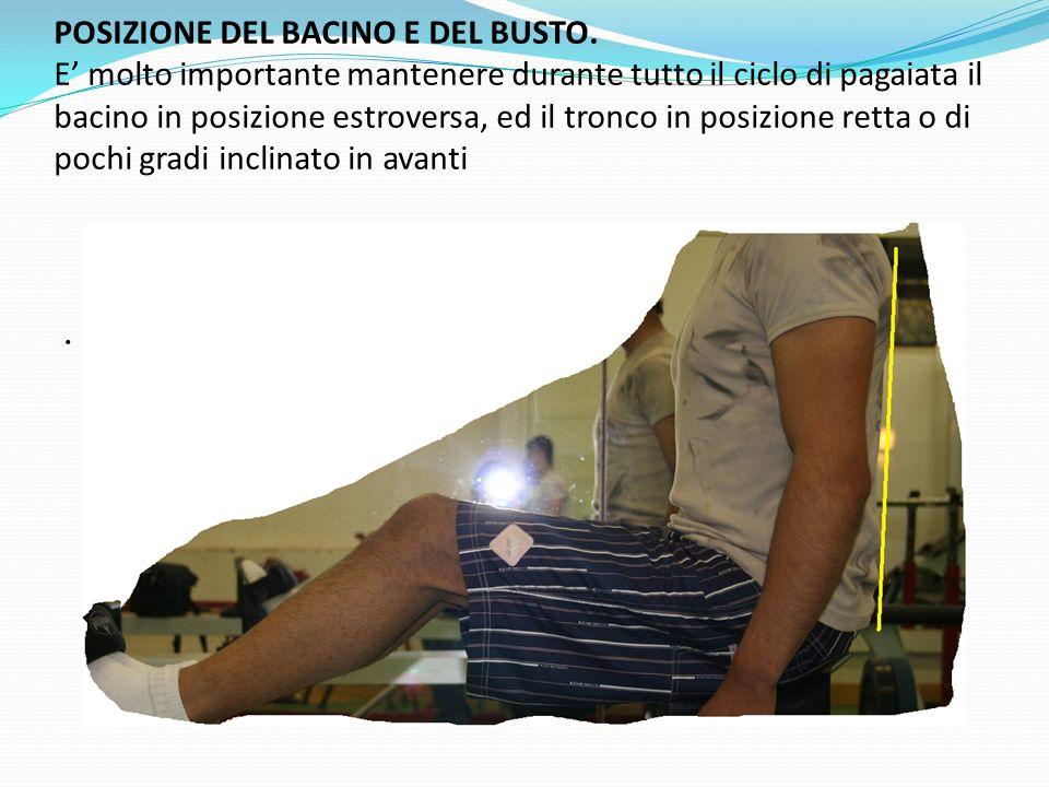 POSIZIONE DEL BACINO E DEL BUSTO