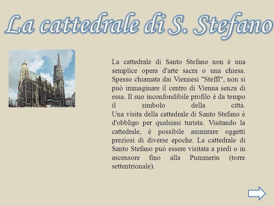 La cattedrale di S. Stefano