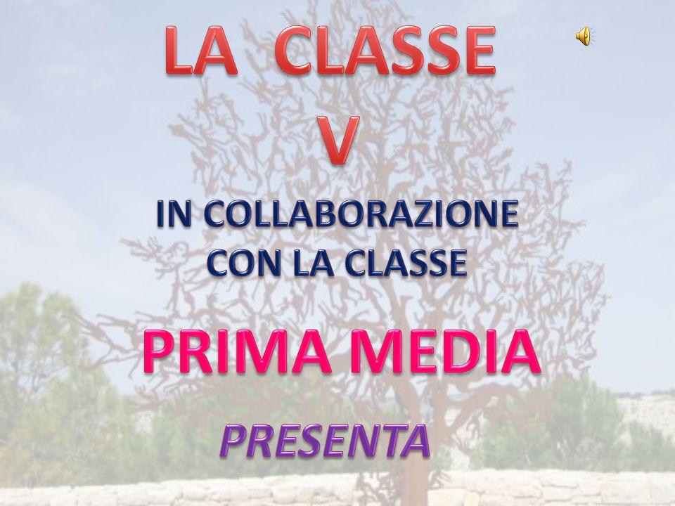 LA CLASSE V IN COLLABORAZIONE CON LA CLASSE PRIMA MEDIA PRESENTA