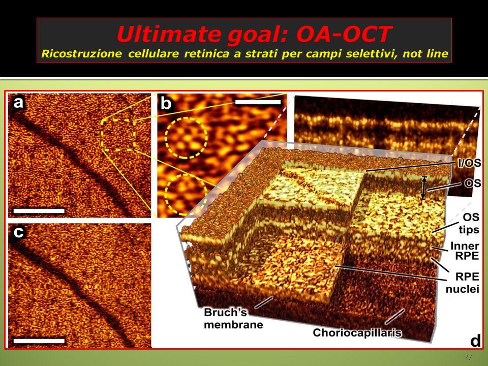 Ultimate goal: OA-OCT Ricostruzione cellulare retinica a strati per campi selettivi, not line