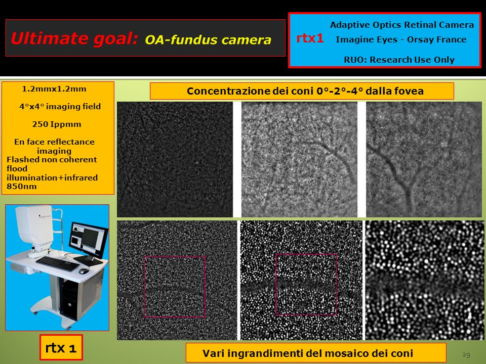 Ultimate goal: OA-fundus camera