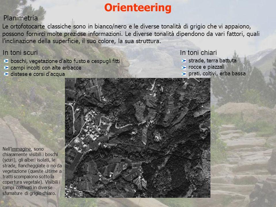 Orienteering Planimetria In toni scuri In toni chiari