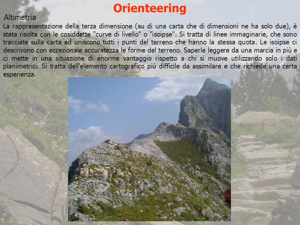 Orienteering Altimetria