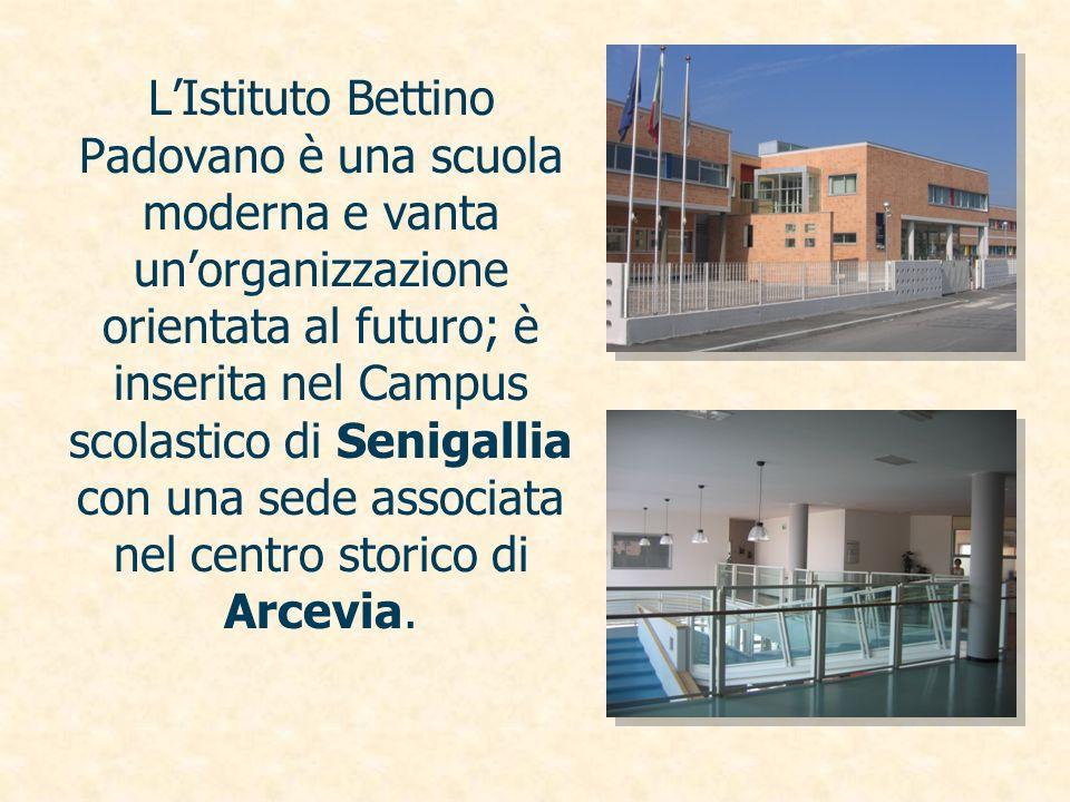 L'Istituto Bettino Padovano è una scuola moderna e vanta un'organizzazione orientata al futuro; è inserita nel Campus scolastico di Senigallia con una sede associata nel centro storico di Arcevia.