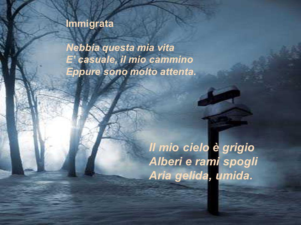 Il mio cielo è grigio Alberi e rami spogli Aria gelida, umida.