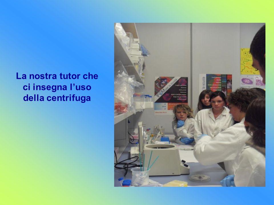 La nostra tutor che ci insegna l'uso della centrifuga