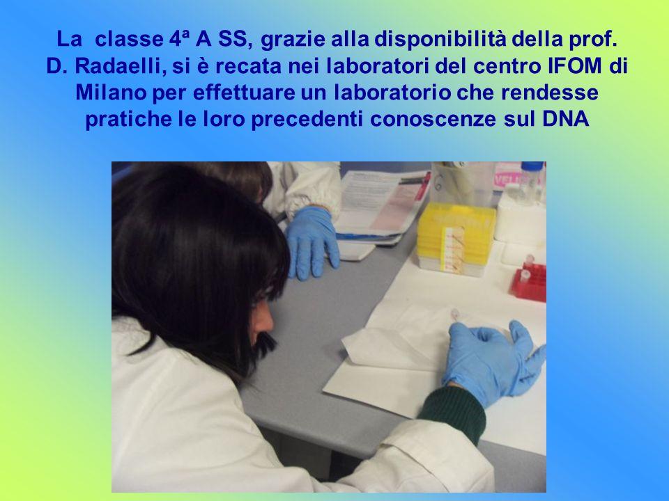 La classe 4ª A SS, grazie alla disponibilità della prof. D