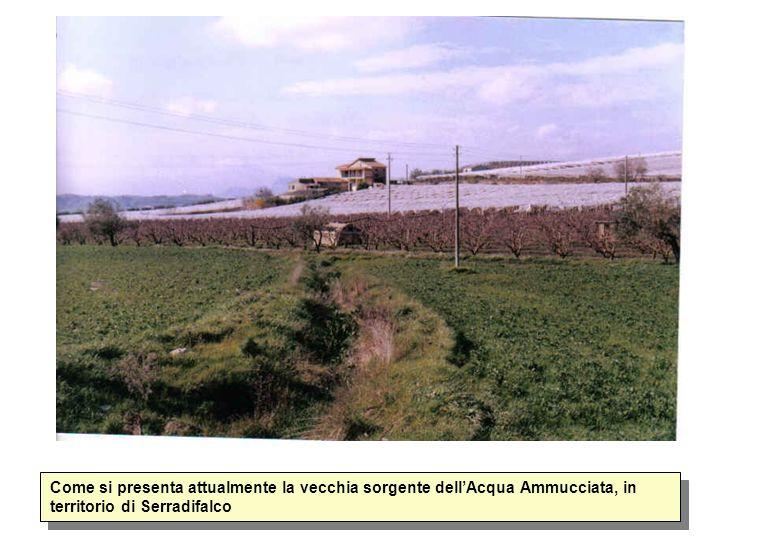 Come si presenta attualmente la vecchia sorgente dell'Acqua Ammucciata, in territorio di Serradifalco