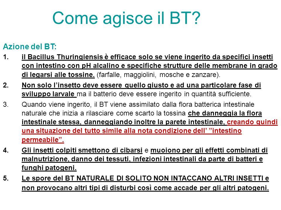 Come agisce il BT Azione del BT: