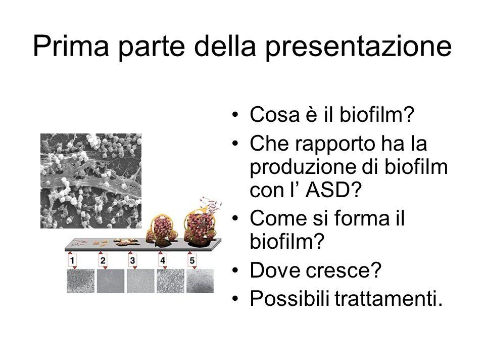 Prima parte della presentazione