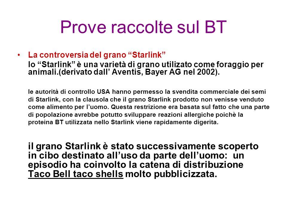 Prove raccolte sul BT La controversia del grano Starlink