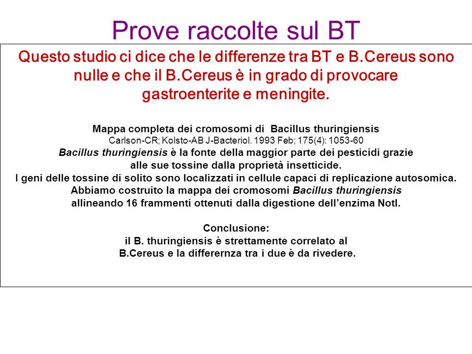 Prove raccolte sul BT Questo studio ci dice che le differenze tra BT e B.Cereus sono nulle e che il B.Cereus è in grado di provocare.