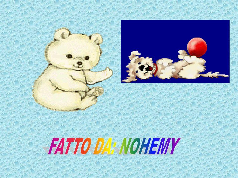 FATTO DA: NOHEMY