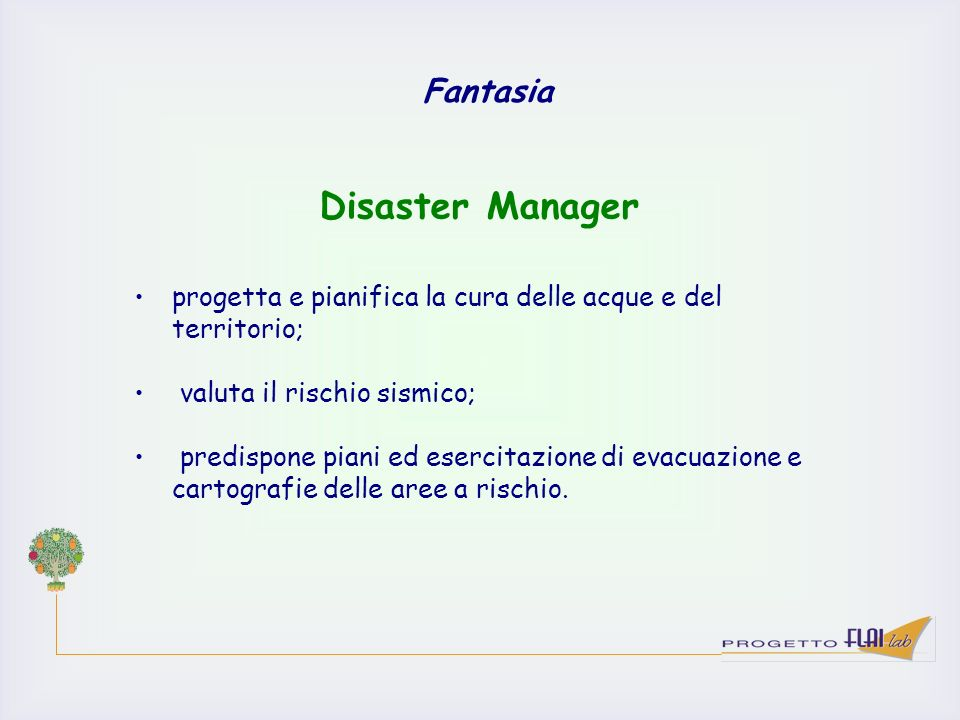 Disaster Manager Fantasia
