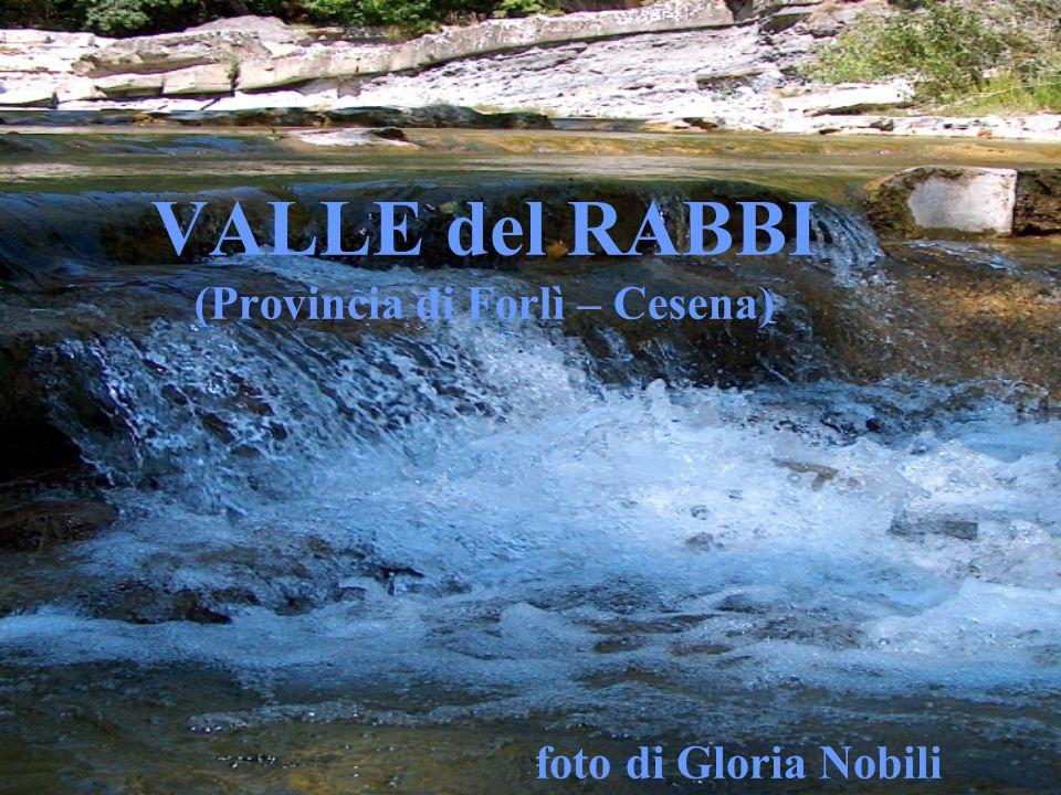 VALLE del RABBI (Provincia di Forlì – Cesena)