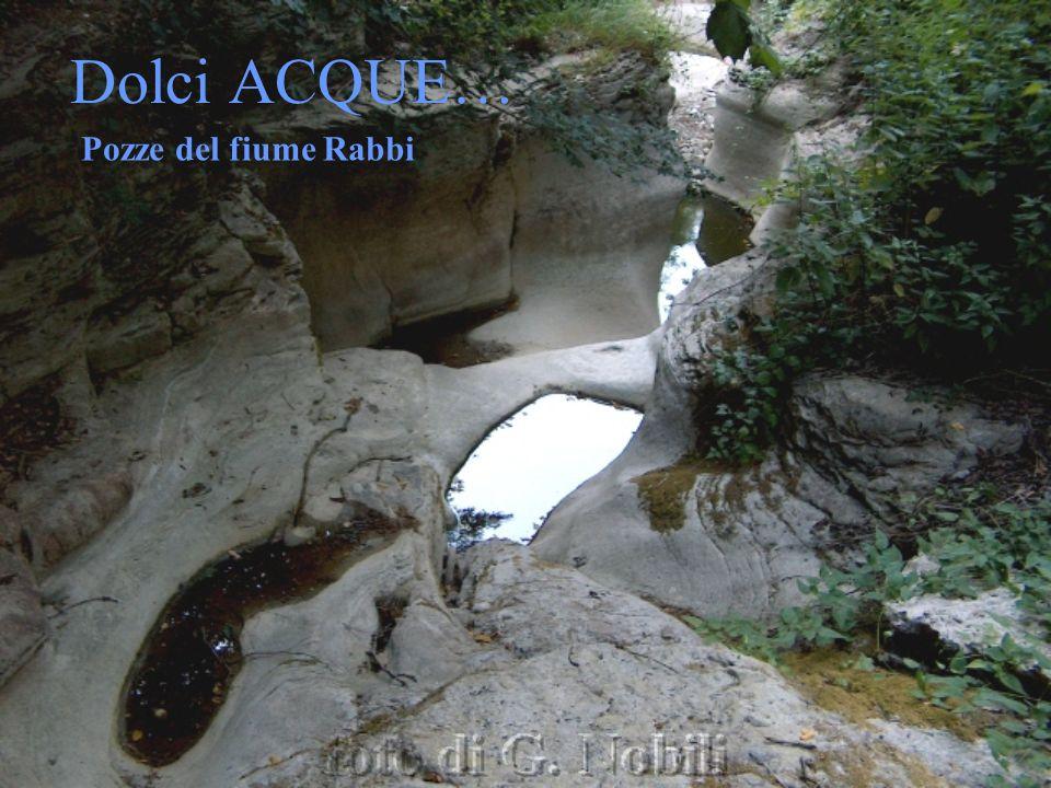 Dolci ACQUE… Pozze del fiume Rabbi