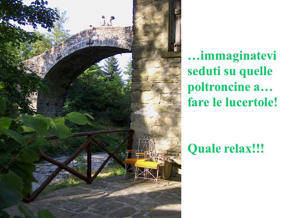 …immaginatevi seduti su quelle poltroncine a… fare le lucertole! Quale relax!!!