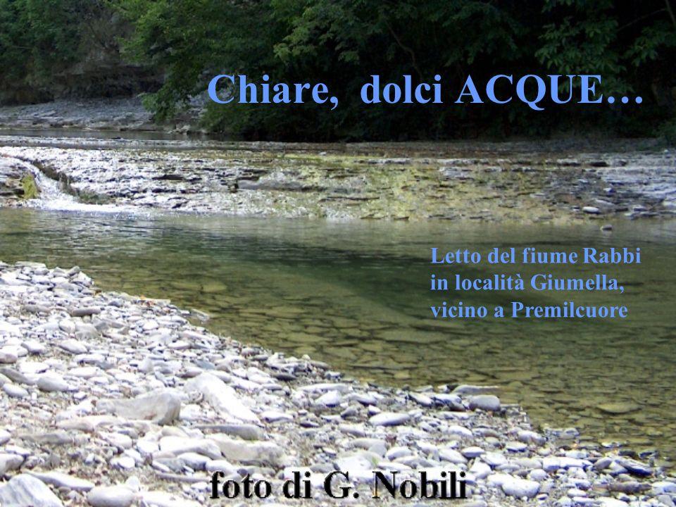Chiare, dolci ACQUE… Letto del fiume Rabbi in località Giumella,