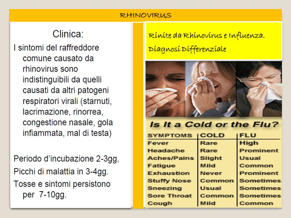 RHINOVIRUS Rinite da Rhinovirus e Influenza. Diagnosi Differenziale