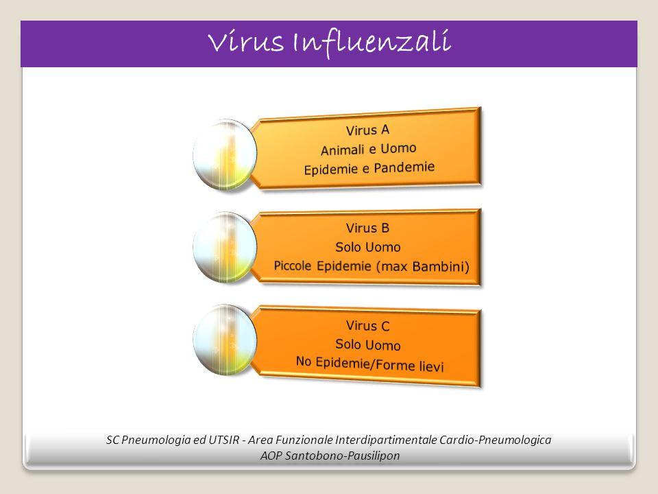 Virus Influenzali Epidemie e Pandemie. Animali e Uomo. Virus A. Piccole Epidemie (max Bambini) Solo Uomo.